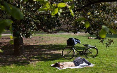 Salariés au Forfait Jours… et jours de repos